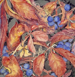 FALL FOLIAGE/ BLUE BERRIES