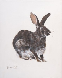 Rabbit, Waiting 2014
